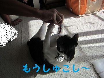 IMG_9277かぷお!