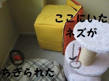 IMG_8895ほうかい