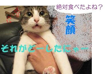201111221659017a9gyakugire.jpg