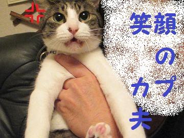 IMG_0940 2011 (75)おなじ
