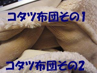 IMG_1280 2011 (2)こたつ