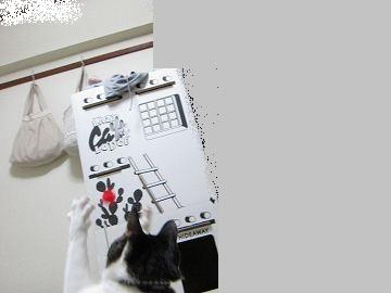 IMG_2701 2012  (69)