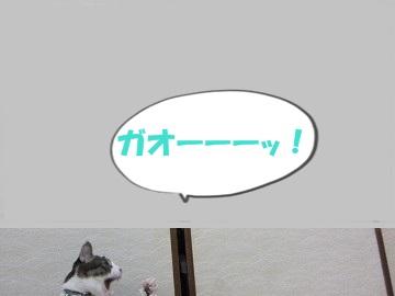 IMG_2701 2012(61)