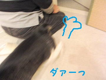 IMG_5090 2012 (21