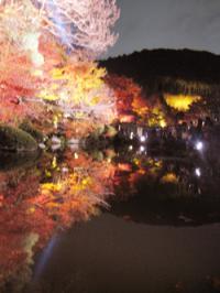 清水寺 池に映る紅葉