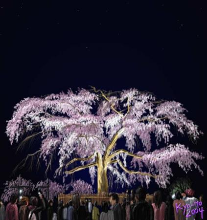 shidare-zakura