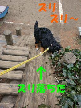 2008_0120_125306-CIMG0215.jpg