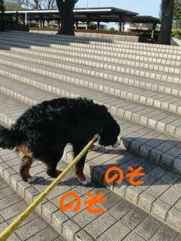2008_0222_082020-CIMG1595.jpg
