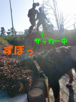 2008_0222_082850-CIMG1607.jpg