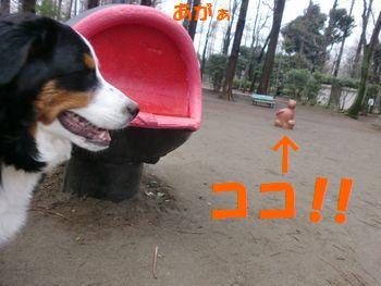 2008_0224_073505-CIMG1734.jpg