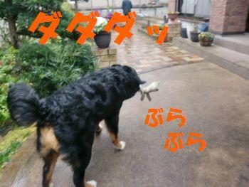 2008_0225_091704-CIMG1789.jpg