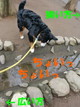 2008_0303_084704-CIMG2226.jpg