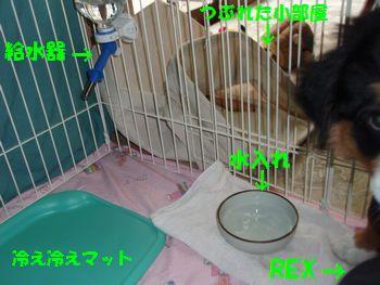 2008_1025_075130-PA250296.jpg