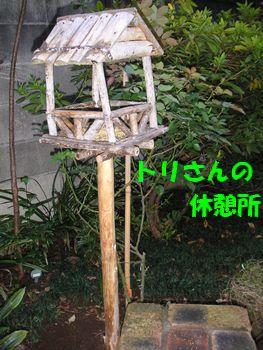 2008_11127_074947-PICT0037.jpg