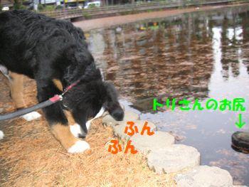 2008_1202_072808-PICT0063.jpg