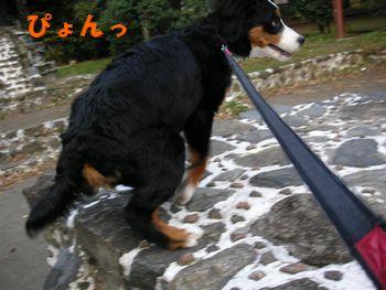 2008_1208_073418-PICT0043.jpg