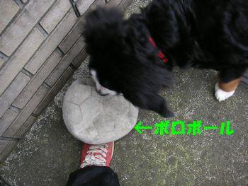 2008_1213_074508-PICT0024.jpg