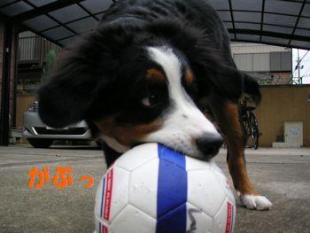 2008_1213_074533-PICT0028.jpg