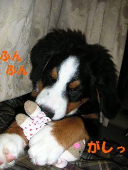 2008_1214_183350-PICT0038.jpg