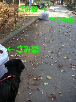 2008_1221_141319-PICT0032.jpg