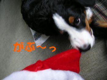 2008_1224_093624-PICT0096.jpg