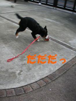 2008_1225_073937-PICT0011.jpg