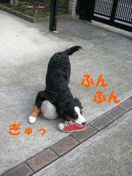 2008_1225_074003-PICT0016.jpg