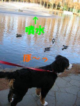 2008_1226_081009-PICT0008.jpg
