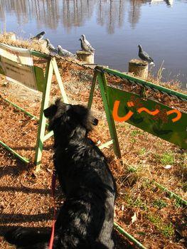 2008_1229_084923-PICT0024.jpg