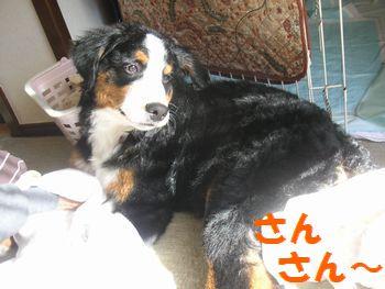 2009_0103_115927-PICT0081.jpg