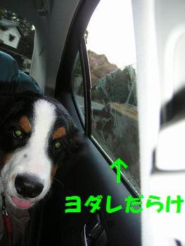 2009_0104_162614-PICT0029.jpg