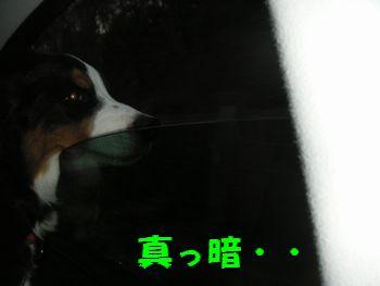 2009_0104_163817-PICT0037.jpg