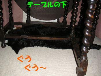 2009_0105_001212-PICT0060.jpg