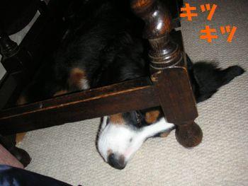2009_0105_001247-PICT0062.jpg