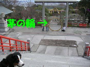 2009_0105_104745-PICT0130.jpg