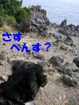 2009_0105_131434-PICT0177.jpg