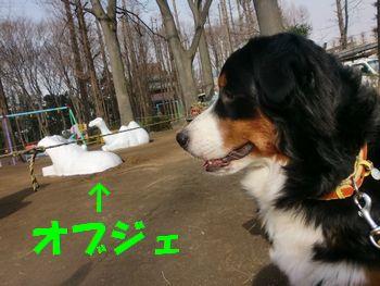2009_0317_082918-CIMG2910.jpg