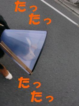 2009_0326_064140-CIMG3694.jpg