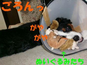 2009_0329_205505-CIMG3916.jpg
