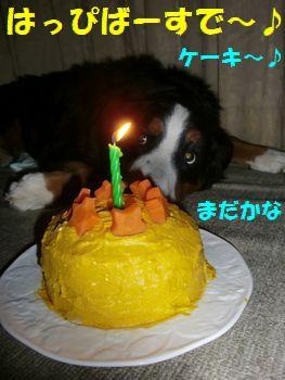 ケーキと一緒。
