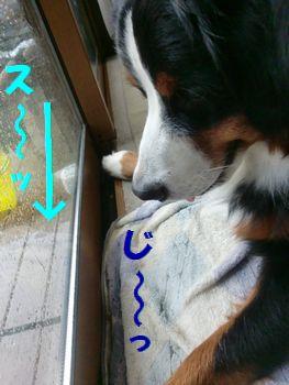 落ちる~!