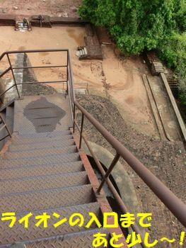 大き目階段