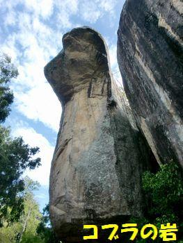 コブラの岩