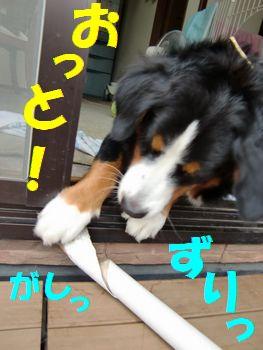 落ちる~!?