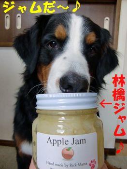 ジャムだ~♪