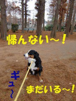 もっと公園にいるの~!!