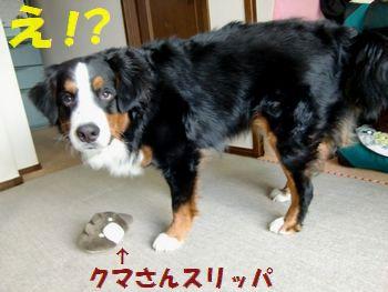 な~に~?