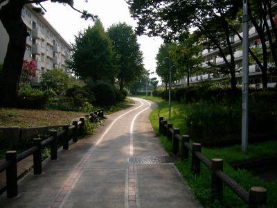 公団桃山南団地の道