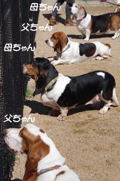 ボルトちゃんとナットちゃん8