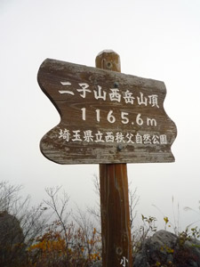 P1030495.jpg
